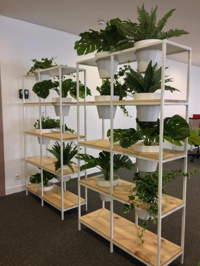 Étagère végétale dans des bureaux à Paris