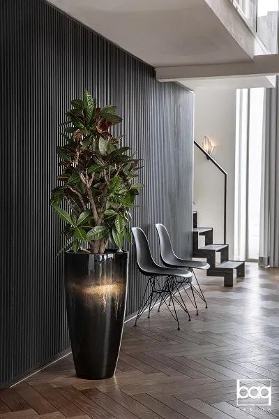 Plante en pot noir dans un accueil d'entreprise