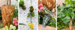 Plantes et pots de terrasse