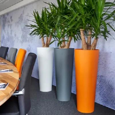 Plantes en pots colorés originaux en salle de réunion d'entreprise