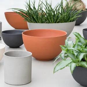 Plantes en petits pots en terre cuite