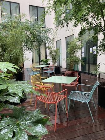Bambous sur une terrasse d'entreprise