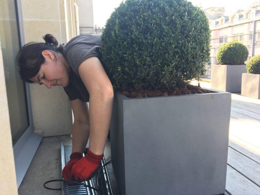Réparation d'un arrosage automatique d'une plante