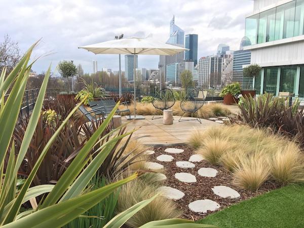 Terrasse végétalisée en entreprise à Paris